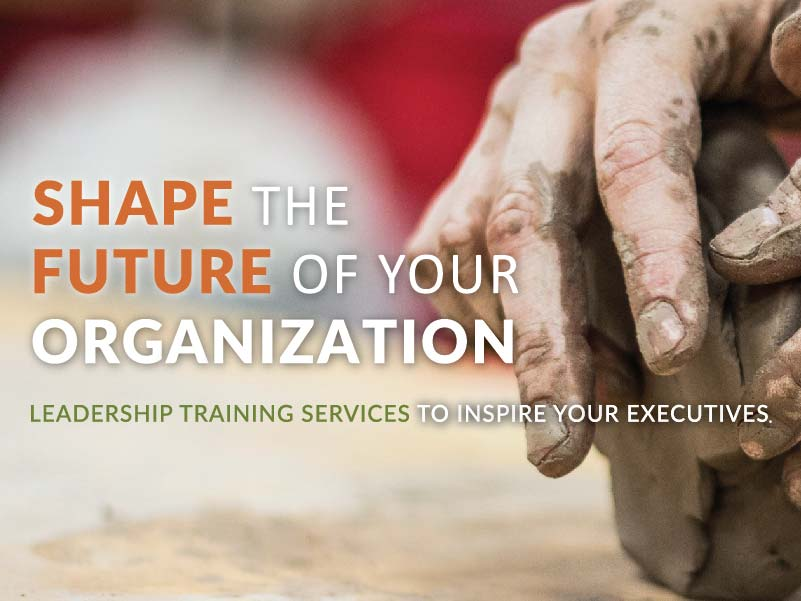 CATMEDIA Leadership Training Shape the future of your organization