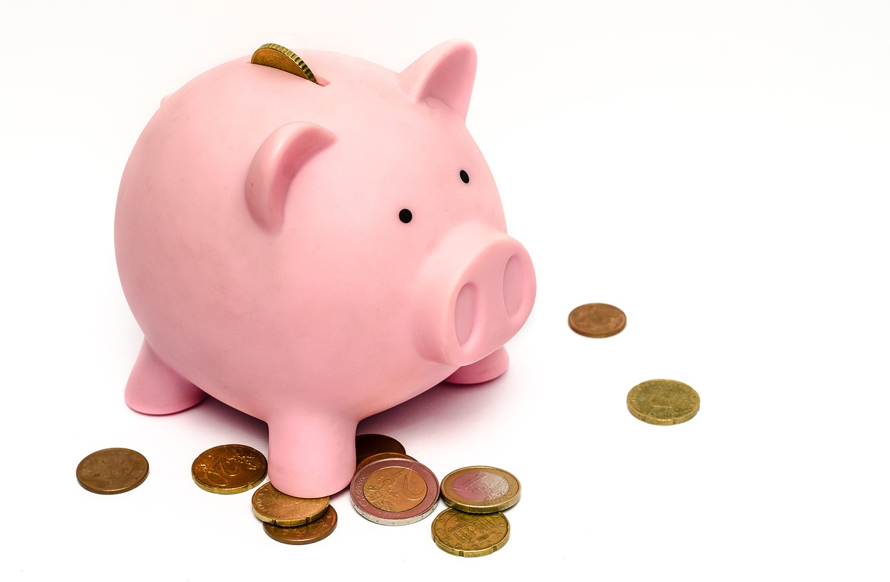 Training Budget Piggy Bank- CATMEDIA