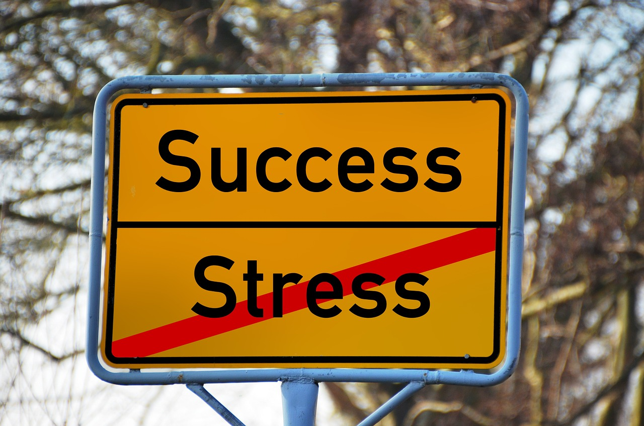 STAFFING SOLUTIONS Success over Stress- CATMEDIA