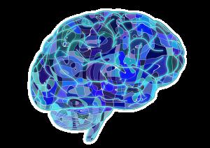 brain-951874_960_720
