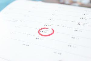 catmedia-calendar
